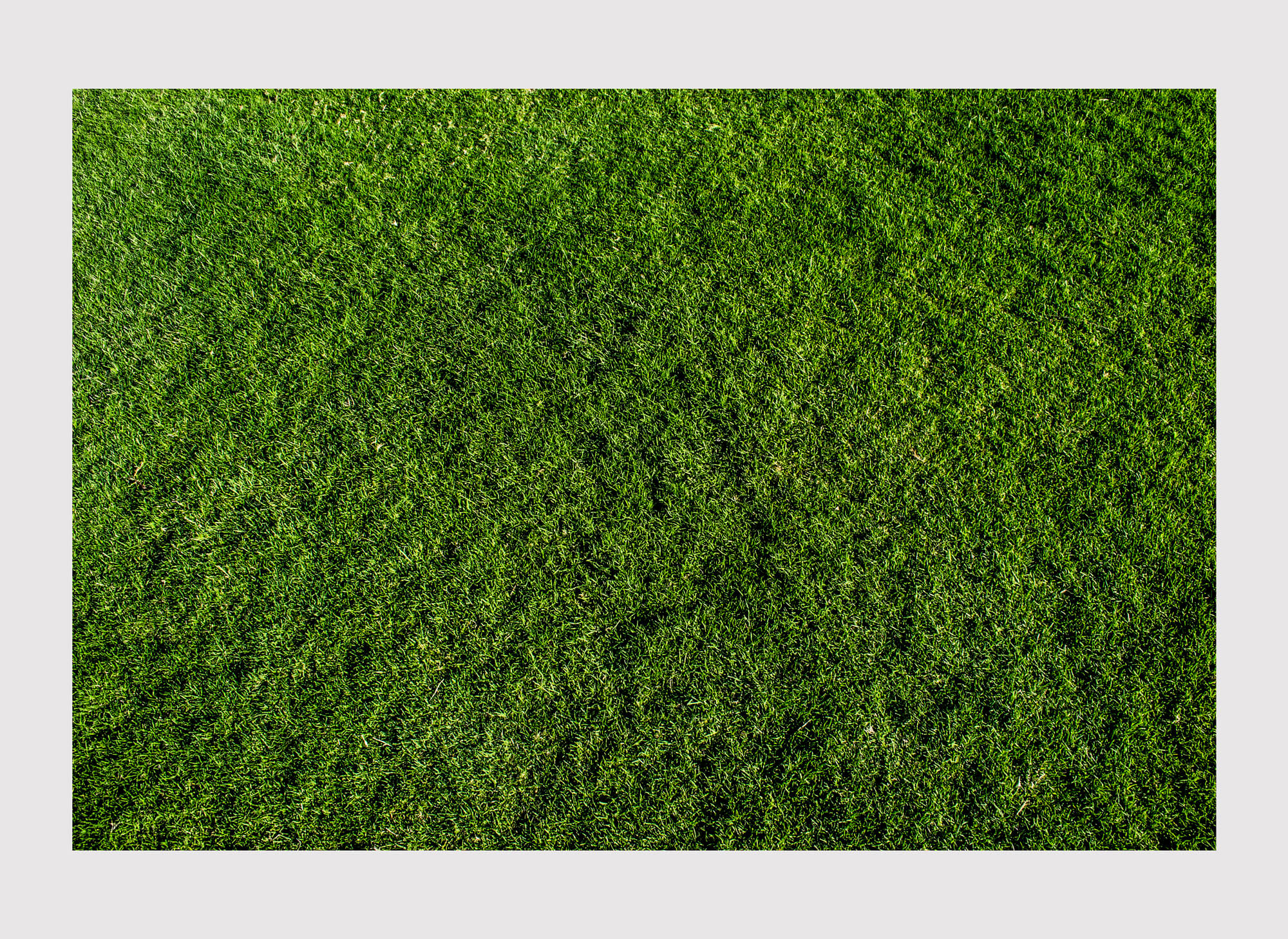 Ethan Beswick Mirari green grass in Dubai photography the south west collective