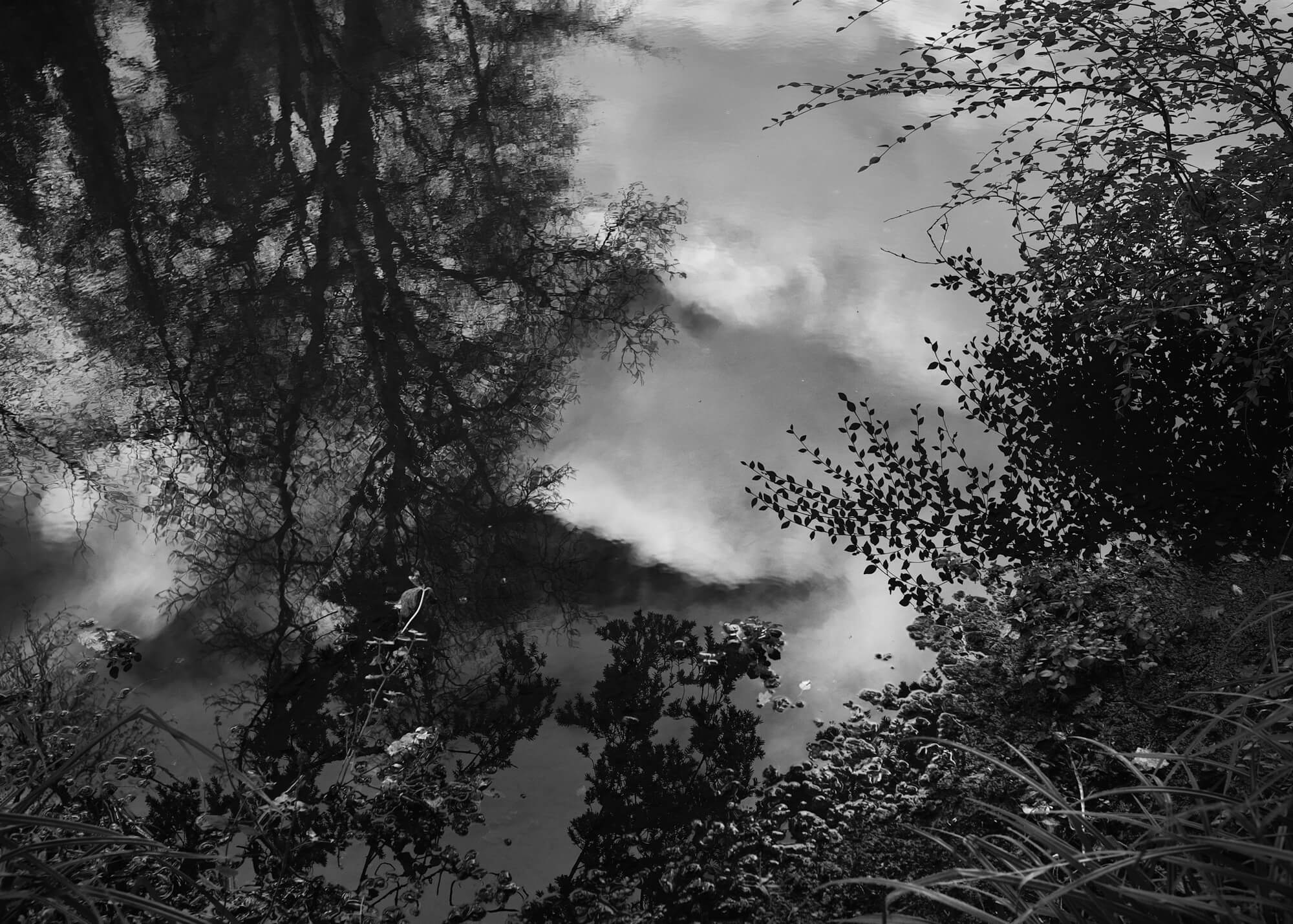 black and white image of sunlight on water with clouds in the background
