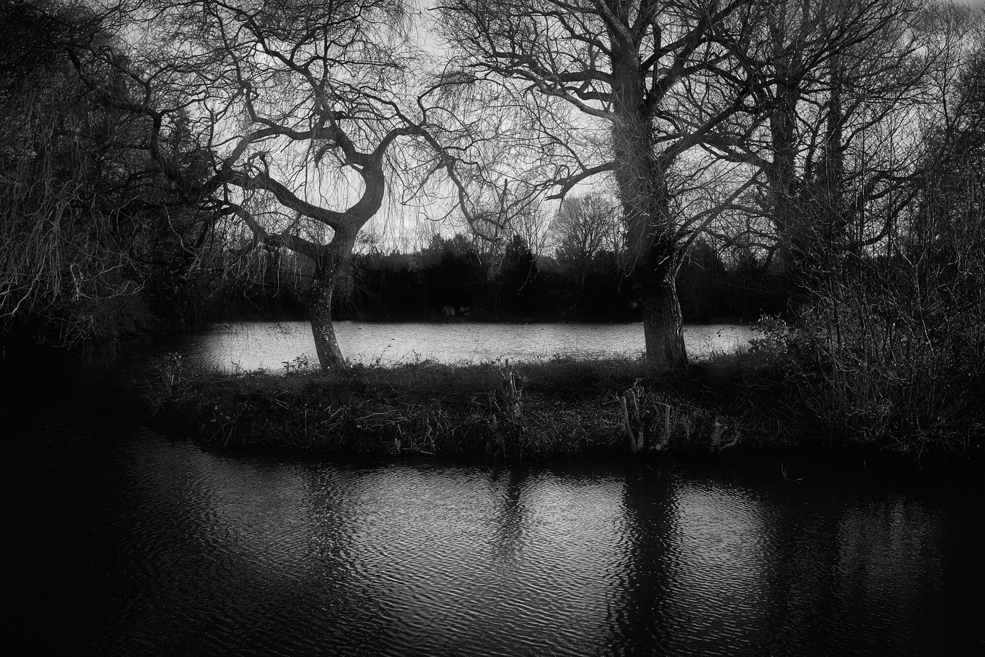 spooky reflection of trees and clouds and shadows on a lake in black and white