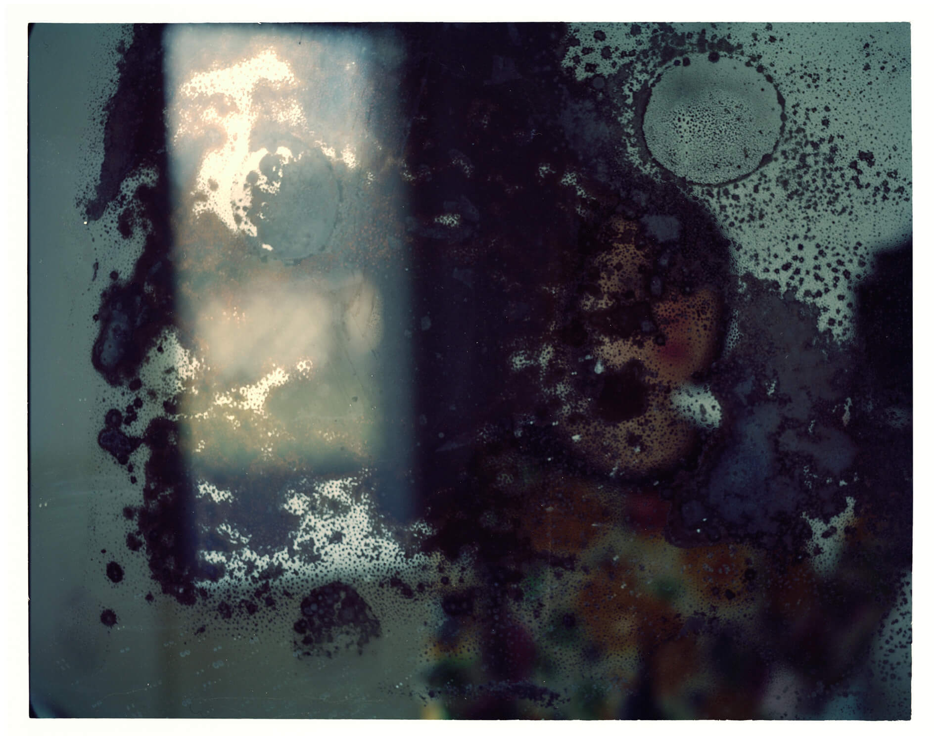 self portrait in window ref