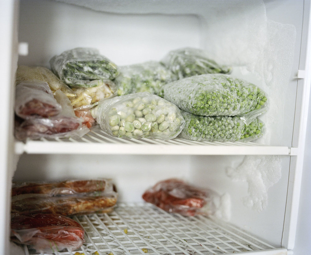 Sandra Mickiewicz Happy Club frozen vegetables and food in old freezer