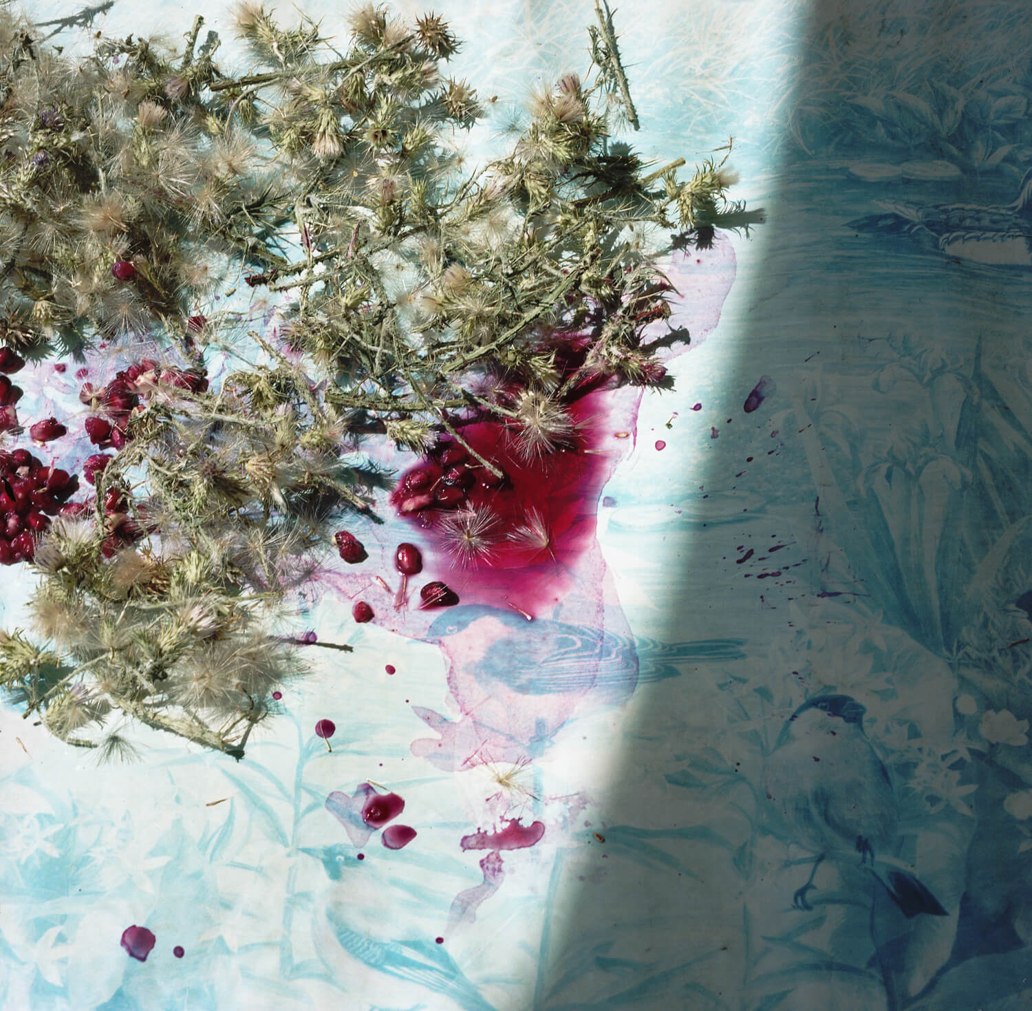 Ioanna Sakeelaraki - Everything I Remember Forgetfully the south west collective of photography stained berry bed sheets