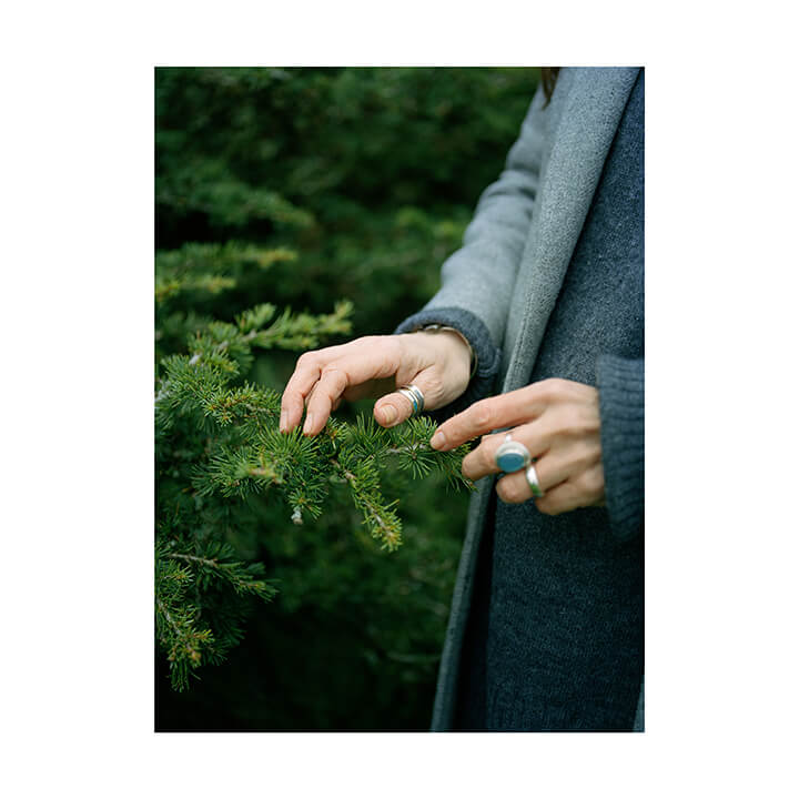 Isobel Colnaghi the south west collective of photography women touching fur trees