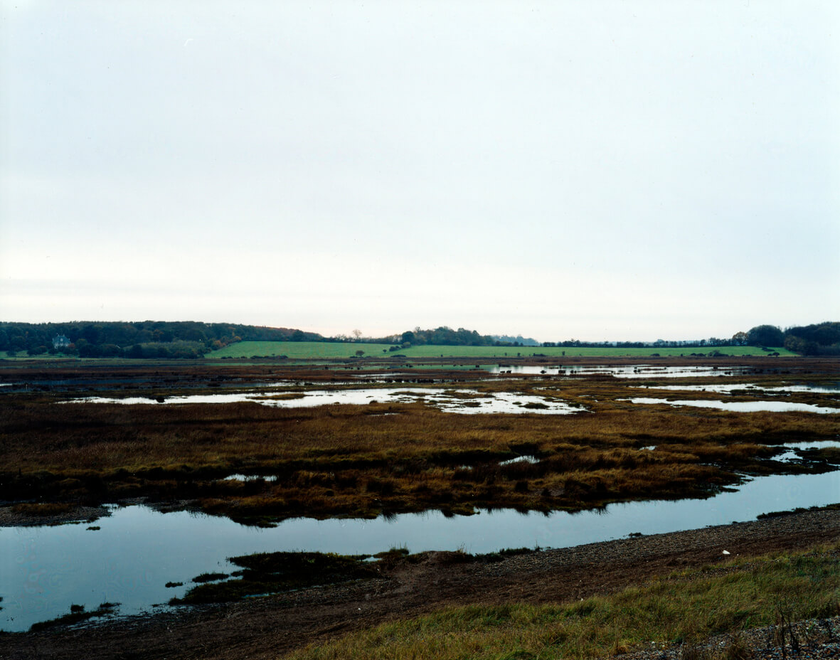 Dingle Marsh Dunwich 2007 Guy Moreton the south west collective of photography ltd trees and water