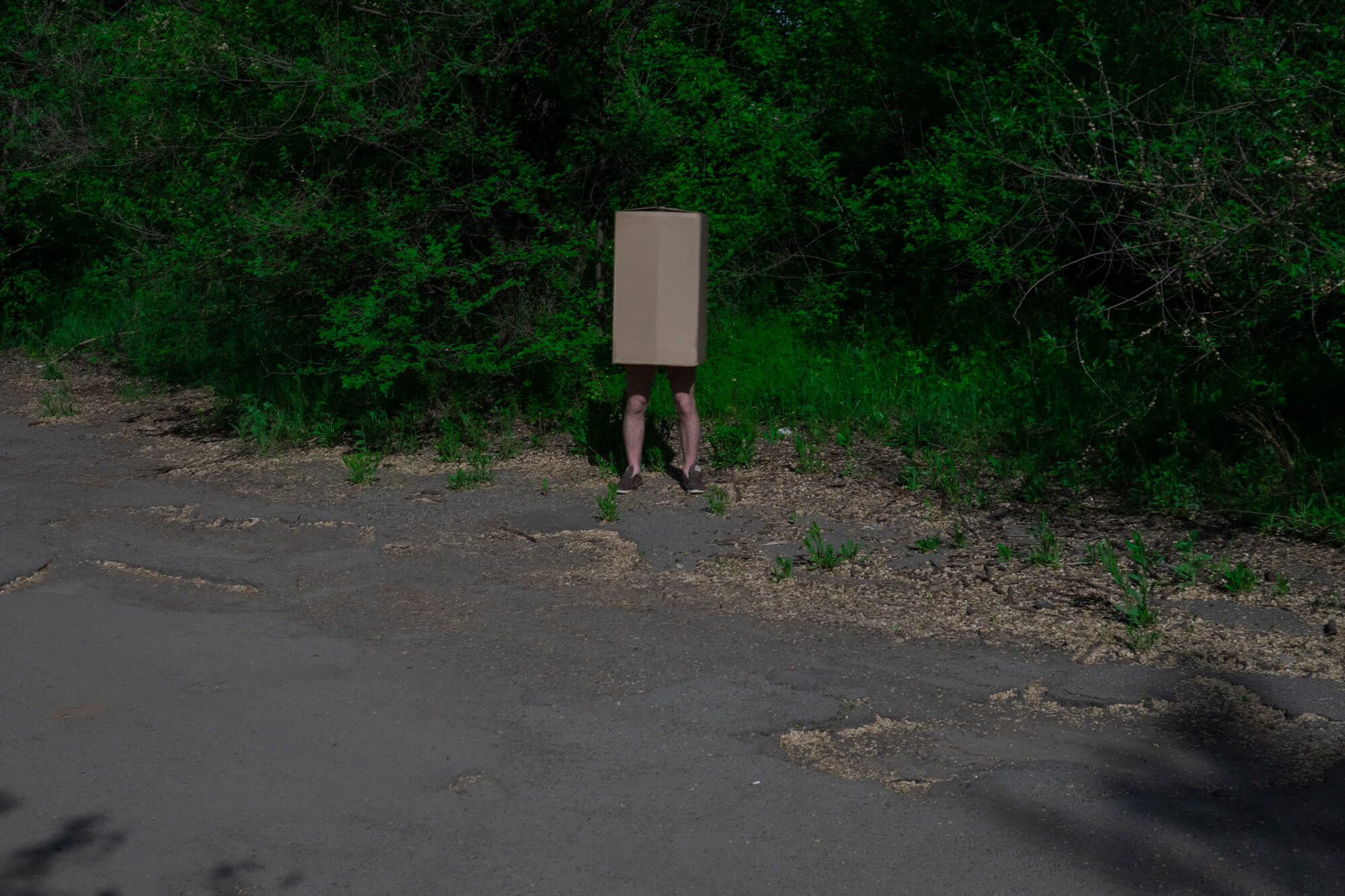 Thor Dudnk the box man man wearing box in the street on the south west collective of photography