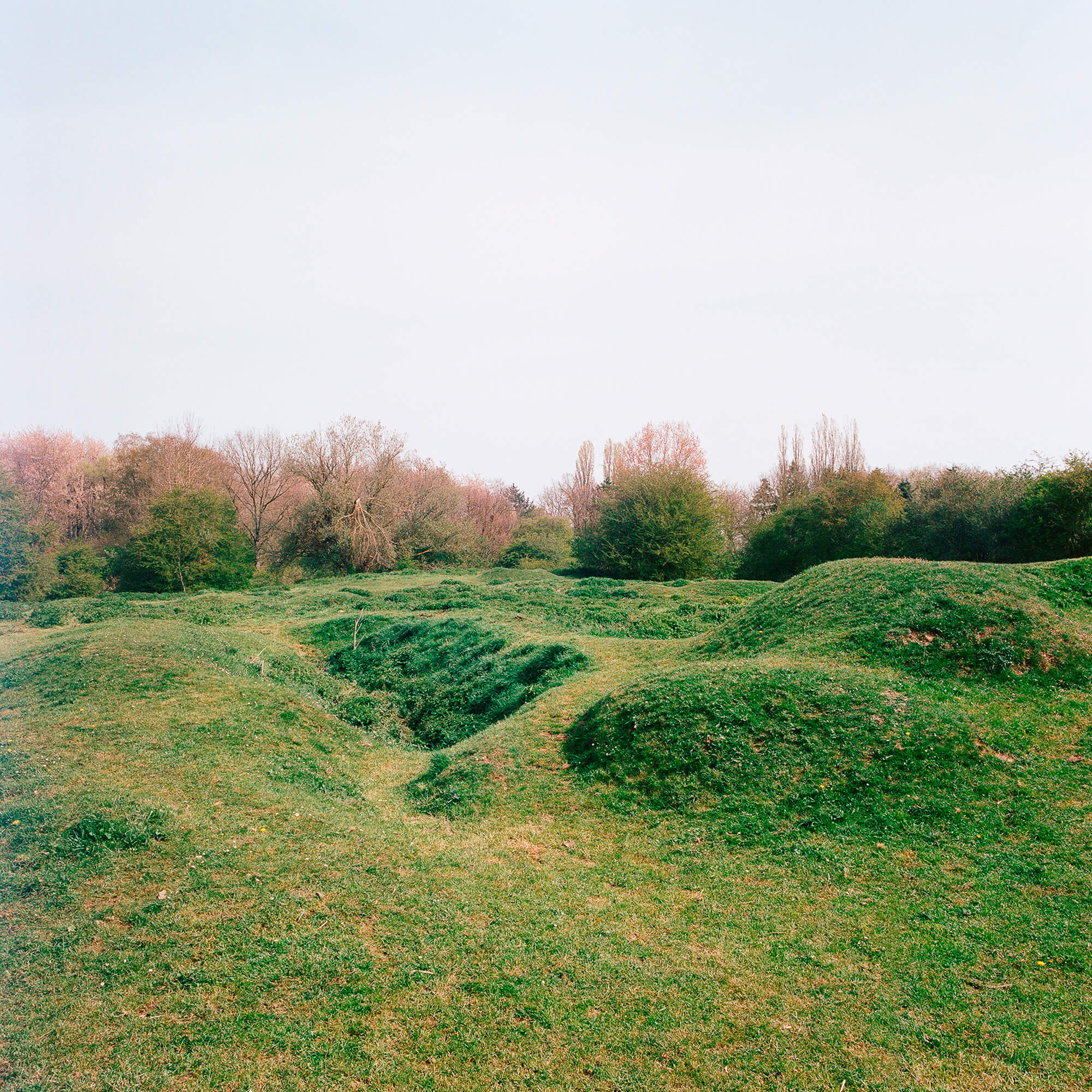 Luke Watson the south west collective of photgraphy ltd green field