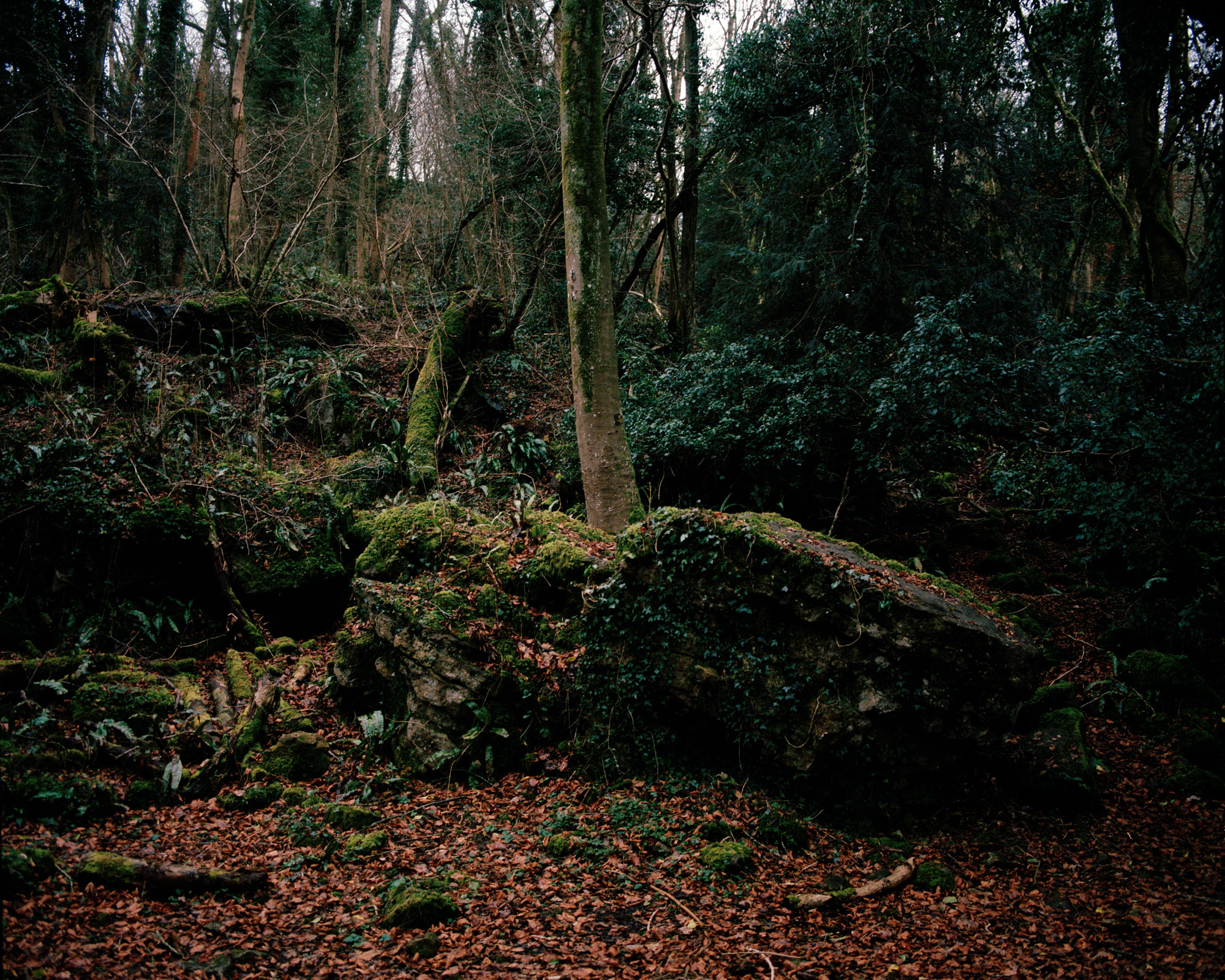 James Arthur Allen interview the south west collective of photography landscape