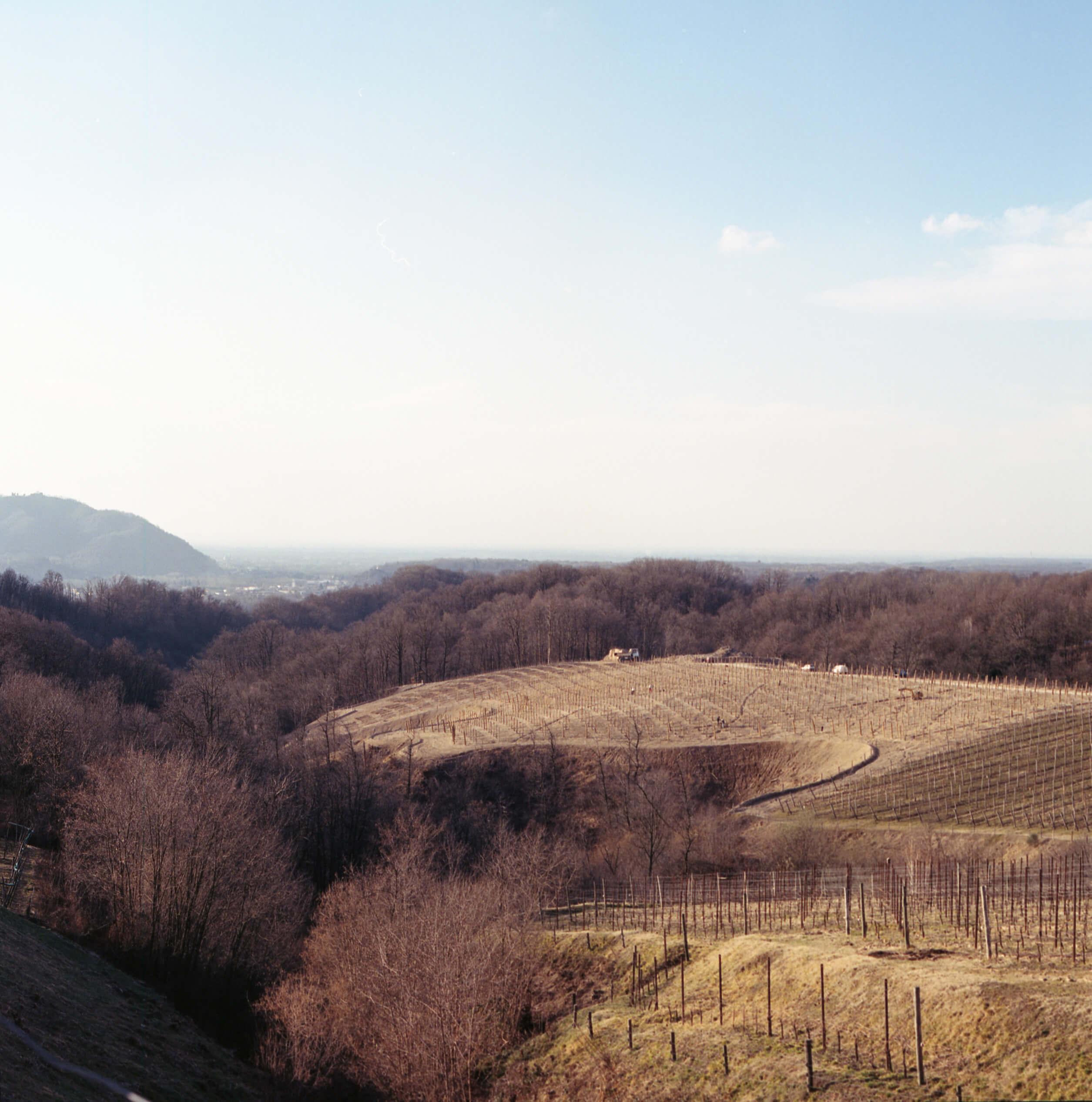 Giulia Simonotti SIAMO TUTTI ALPINI the south west collective of photography landscape of omarini
