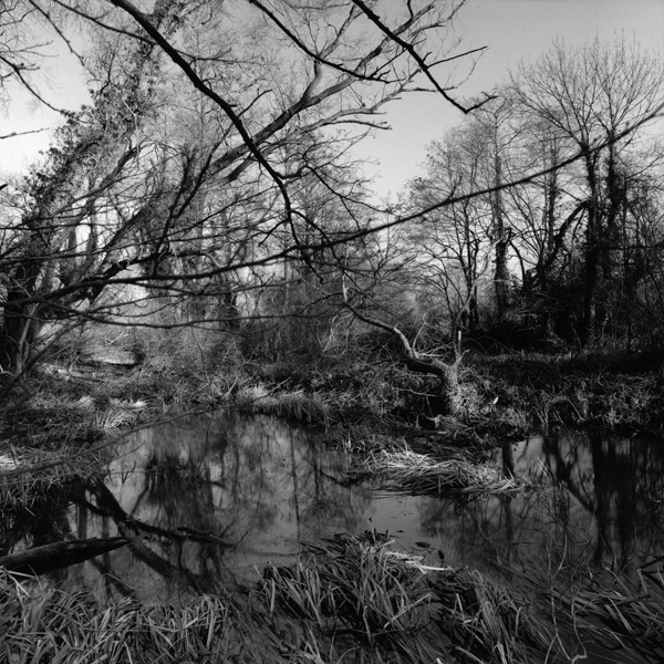A Silent Nature: Nicholas Sinclair's Crossing the Water By Samuel Fradley the south west collective of photography