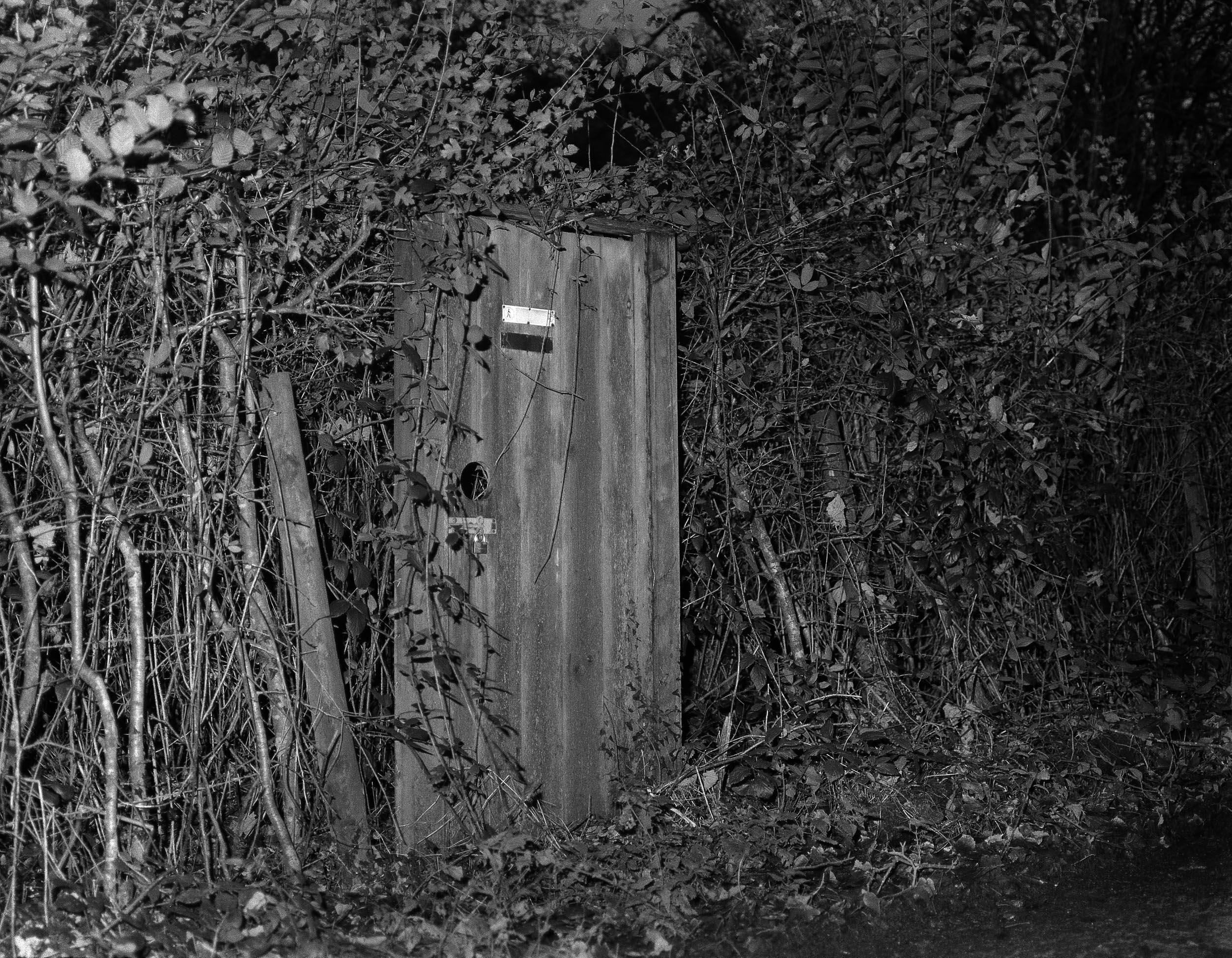 Rosie Dale - Runaways garden in black and white