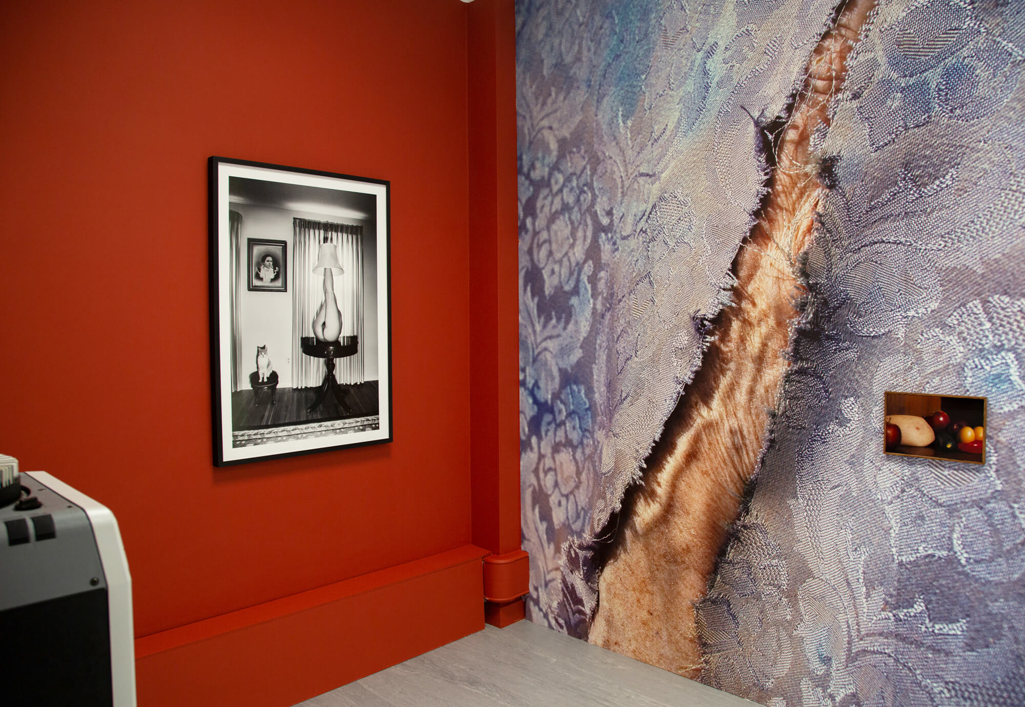 Loreal Prystaj install shot, photo on red wall the south west collective