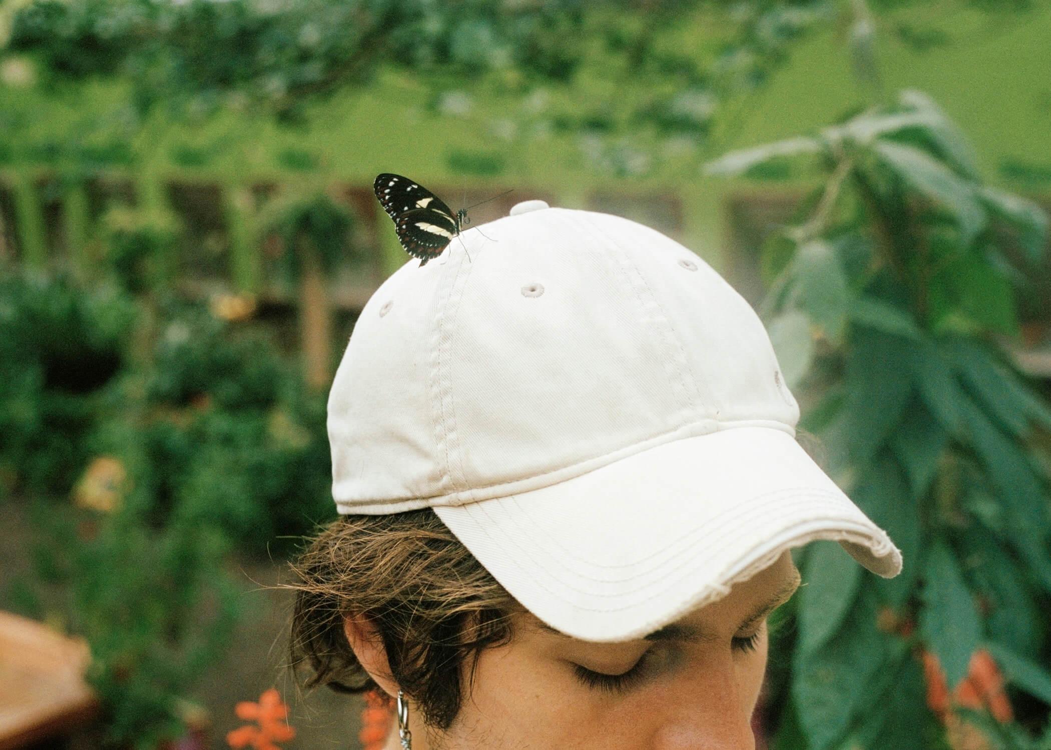 Skaidrė Rudokaitė - Ambivalence butterfly sat on women hat
