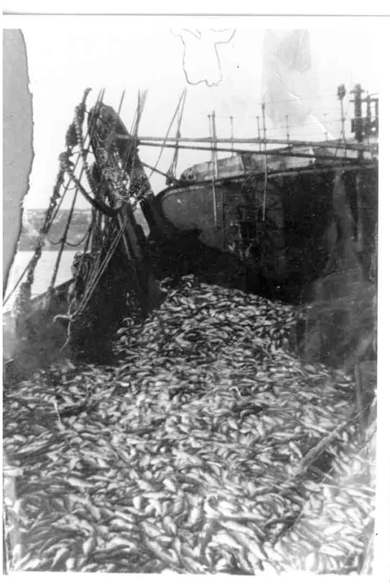 Eva Watkins - Old Salt the south west collective of photography black and white photo of fishing boat