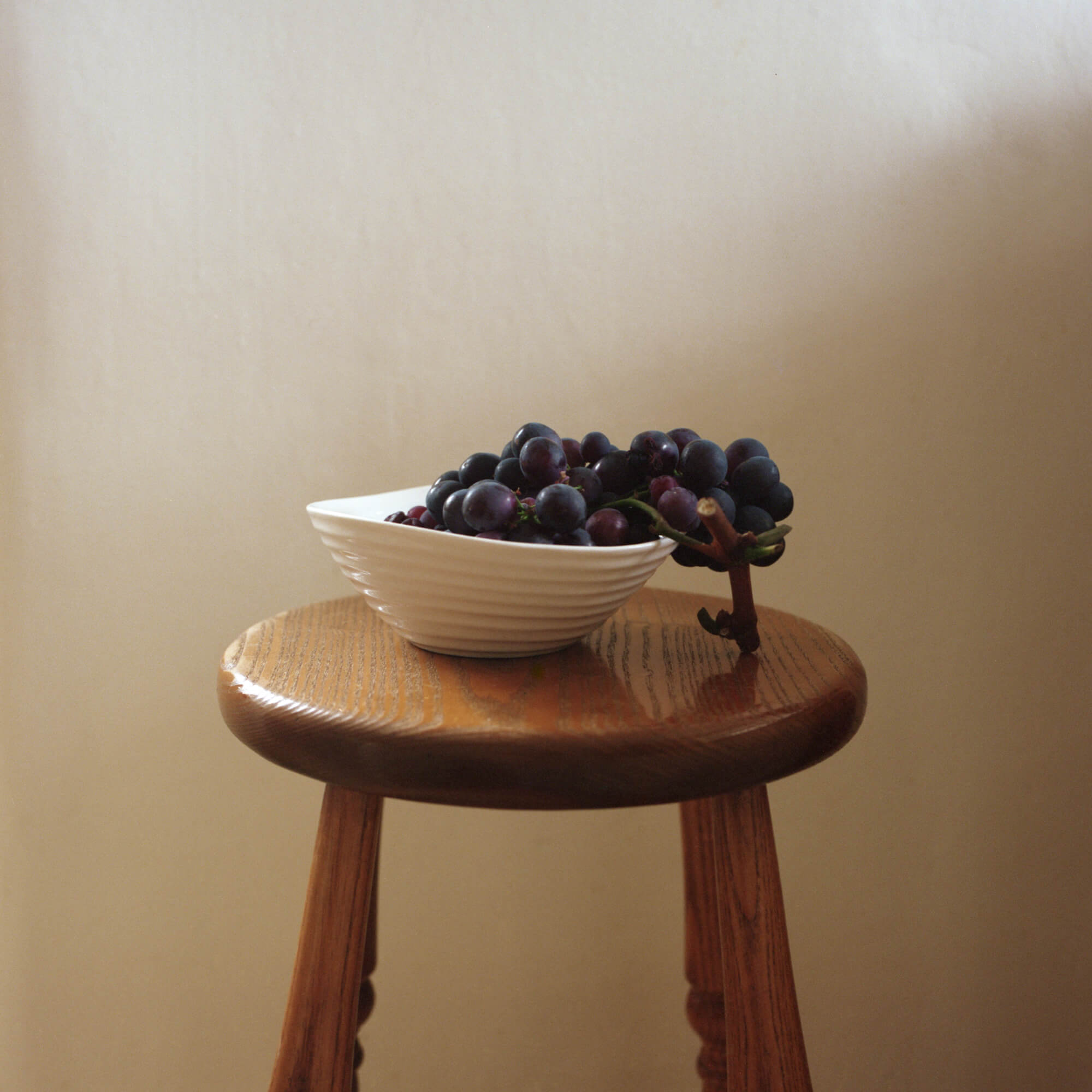 Phoebe Somerfield - Grapefruit Boulevard the south west collective of photography still life photo of a fruit bowl