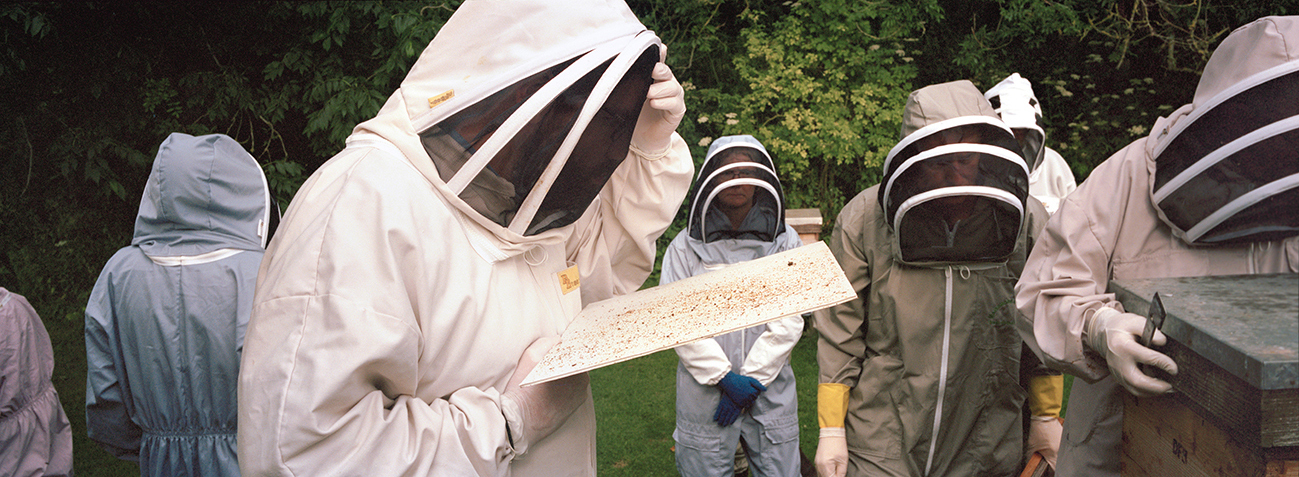 Philippa Klaiber - Vorest the south west collective of photography bee keepers looking at honeycomb
