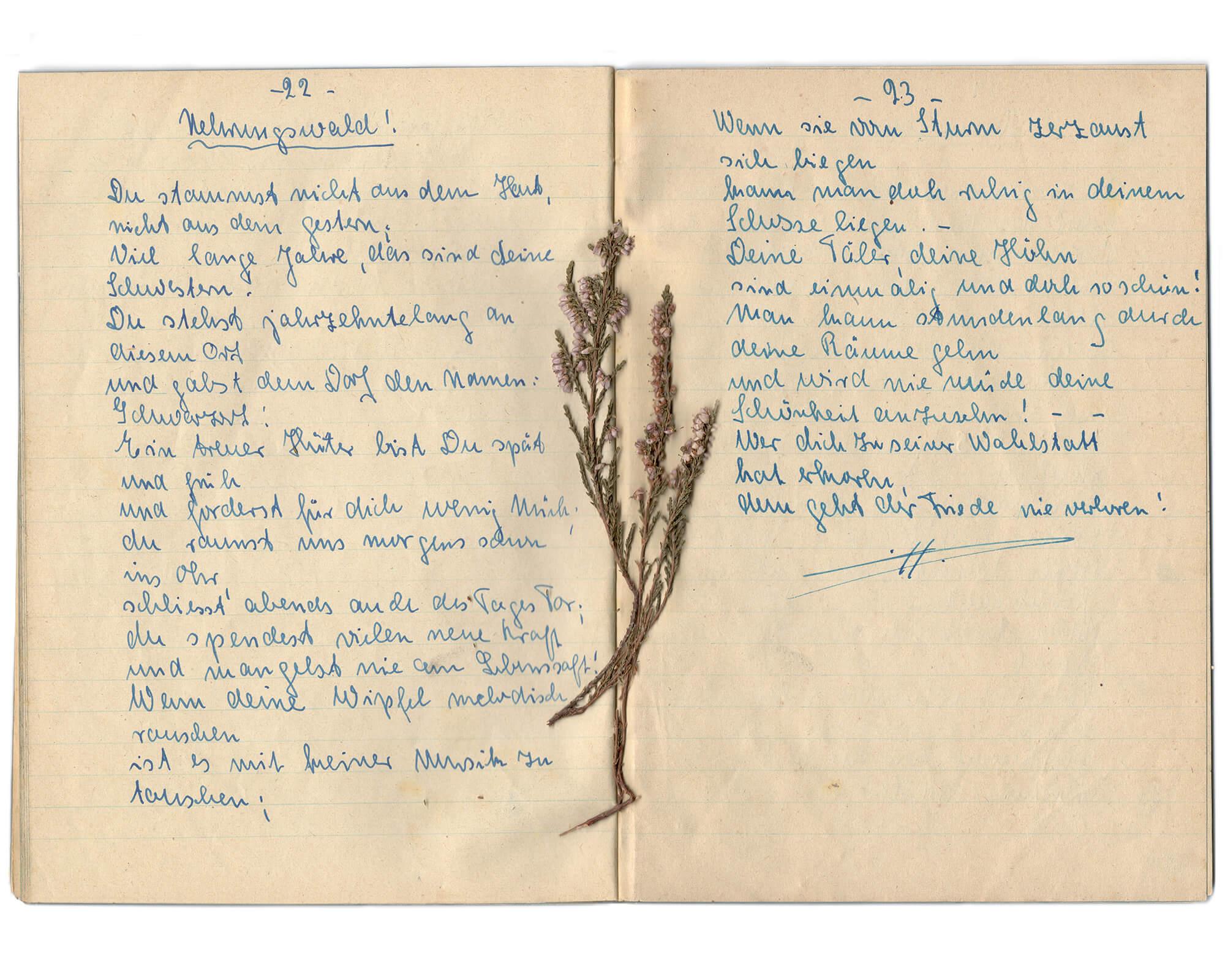 Tadas Kazakevicius - Between Two Shores half written notes