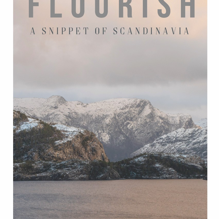 Magazine Flourish - Volume 3 - A Snippet of Scandinavia the south west collective of photography ltd