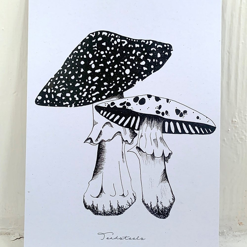 Lucy Saunders Collection: Complete Black & White Flora Art Prints - 4 X A5