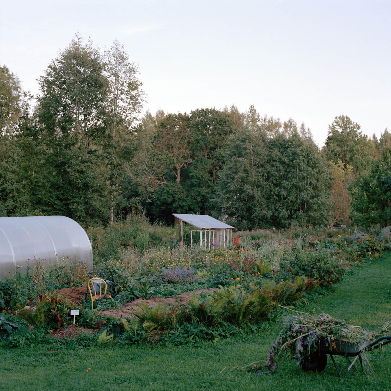 Kadri Otsiver - Ta aed on tema nägu (Her garden has her face) Landscape garden scene with greenhouse in distance