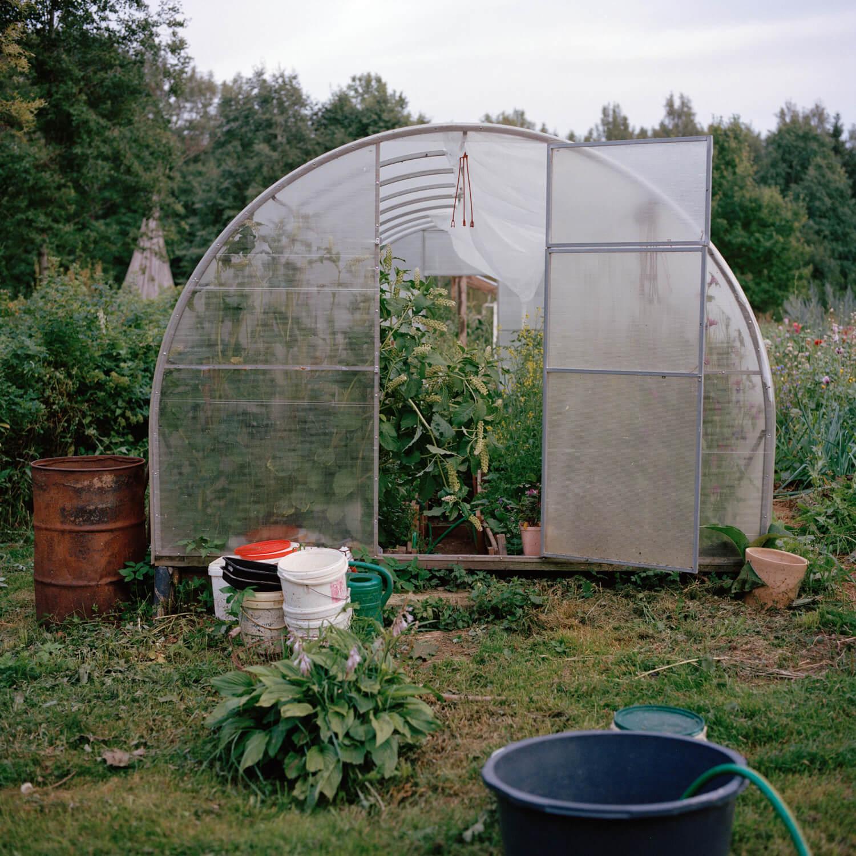 Kadri Otsiver - Ta aed on tema nägu (Her garden has her face) Greenhouse with door open to reveal vegetation