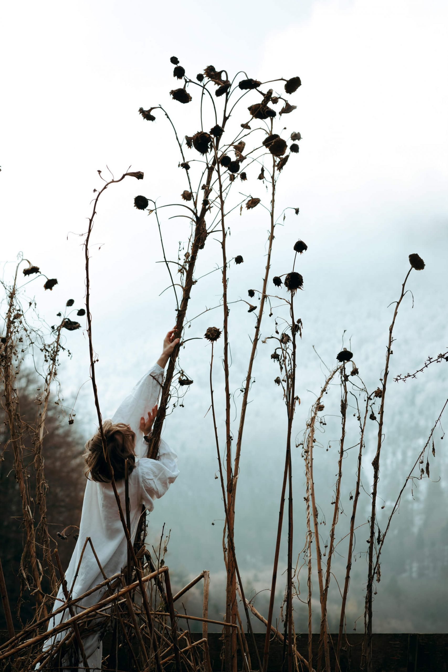 Nadja Ellinger - Path of Pins woman holding giant tree
