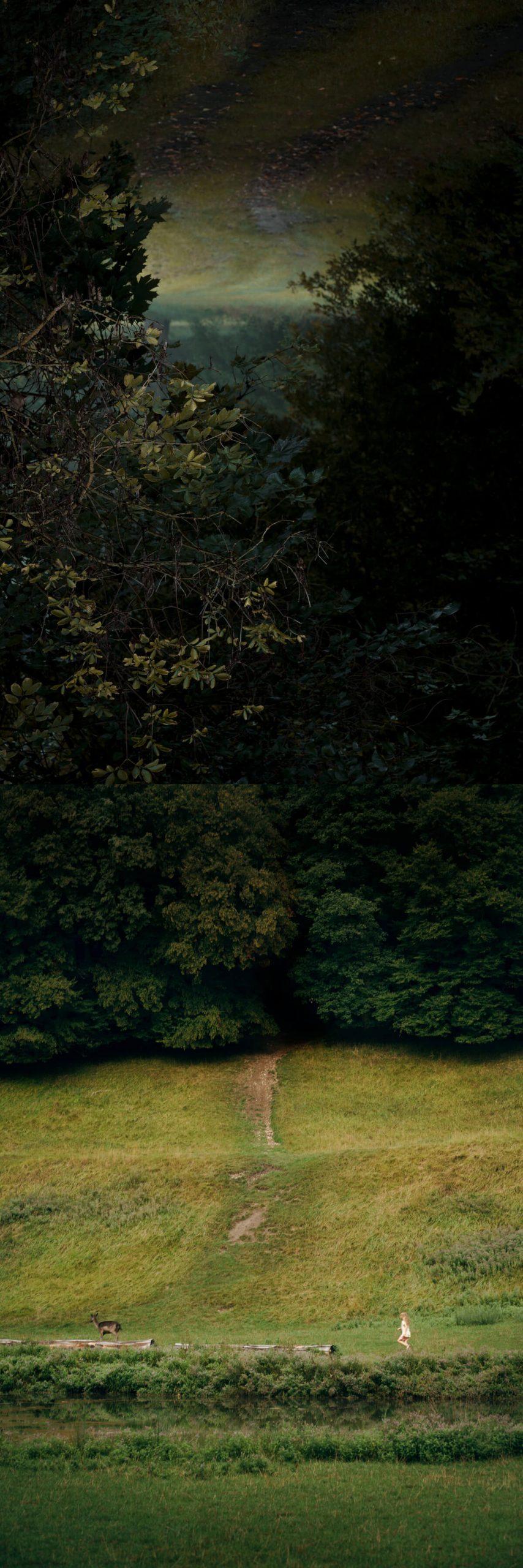 Nadja Ellinger - Path of Pins - Landscape