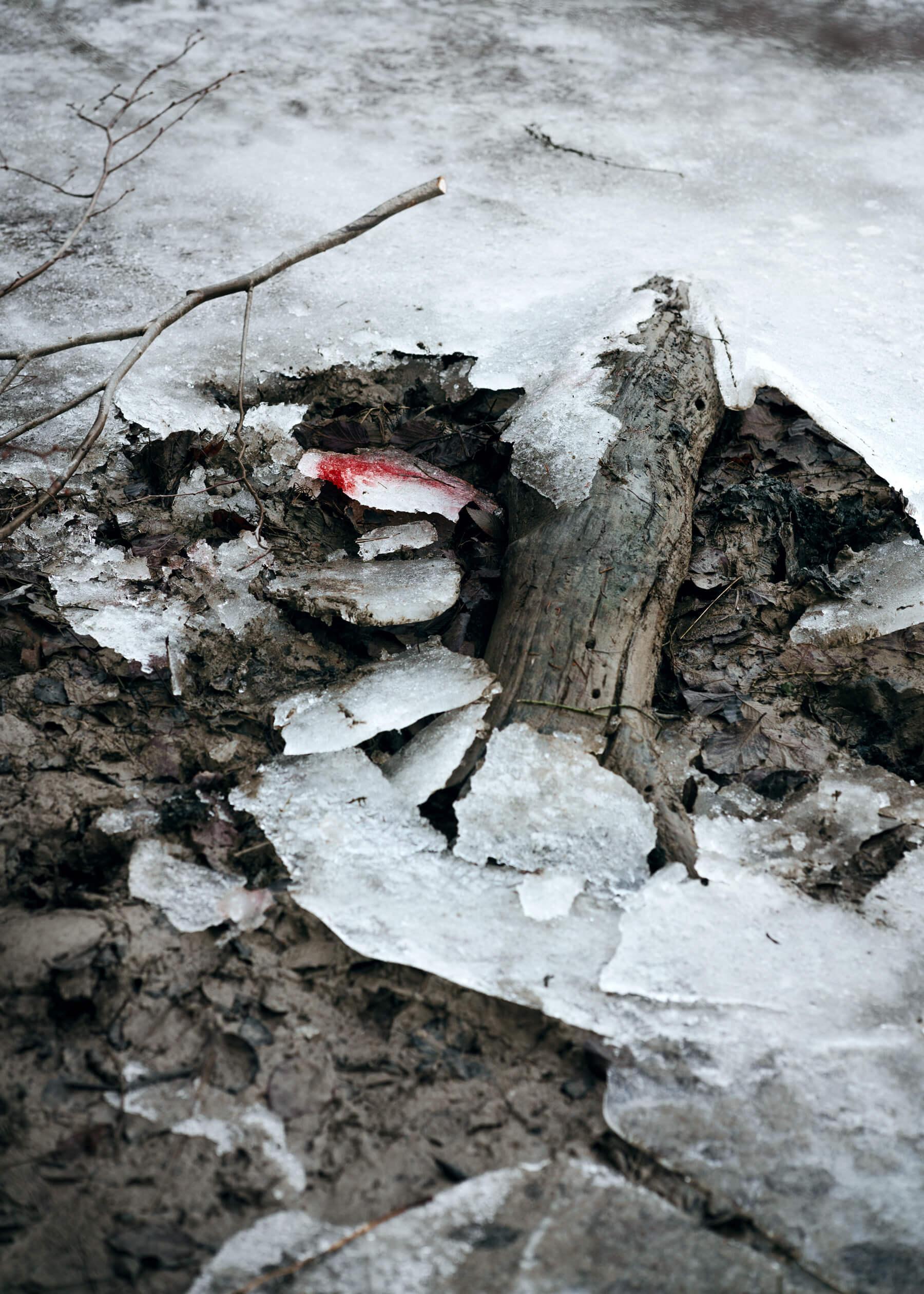 Nadja Ellinger - Path of Pins bloody fish on ice