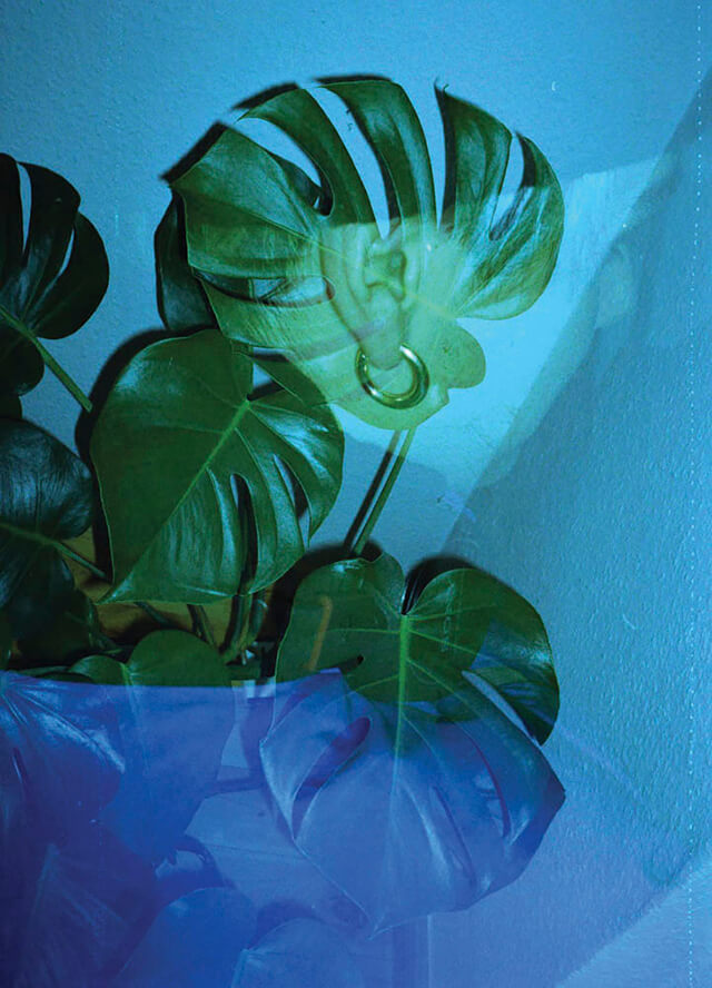 Tiana Ferguson - Fool Me Once, Fool You Twice. Double exposure with palm leaves and blue shapes